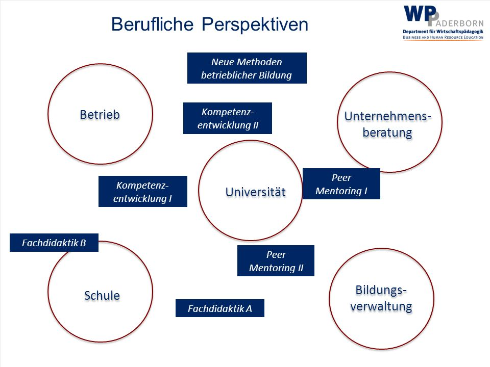 Berufliche Perspektiven Bildungs- verwaltung Bildungs- verwaltung Betrieb Unternehmens- beratung Fachdidaktik A Schule Universität Fachdidaktik B Neue