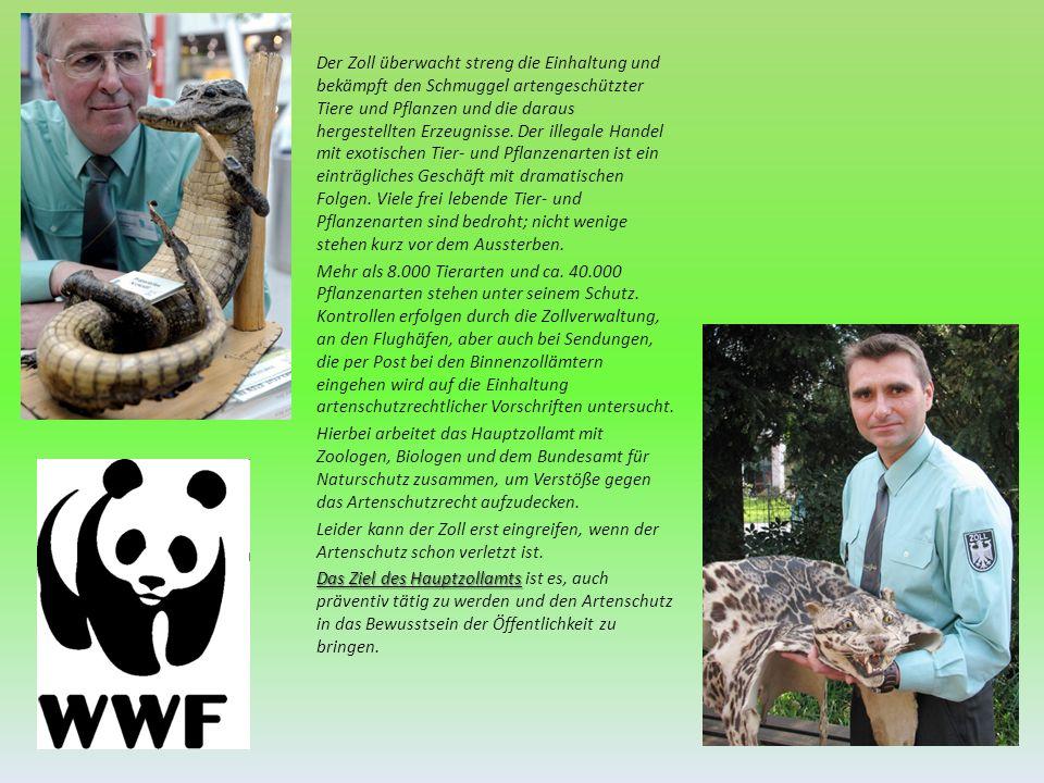 Der Zoll überwacht streng die Einhaltung und bekämpft den Schmuggel artengeschützter Tiere und Pflanzen und die daraus hergestellten Erzeugnisse. Der