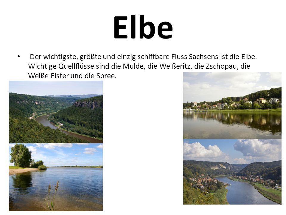 Elbe Der wichtigste, größte und einzig schiffbare Fluss Sachsens ist die Elbe. Wichtige Quellflüsse sind die Mulde, die Weißeritz, die Zschopau, die W