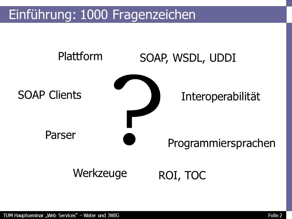 TUM Hauptseminar Web Services – Water und JWIG Folie 2 Einführung: 1000 Fragenzeichen .