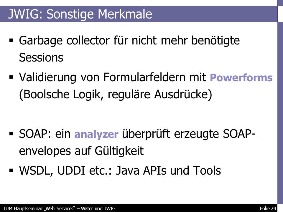 TUM Hauptseminar Web Services – Water und JWIG Folie 29 JWIG: Sonstige Merkmale Garbage collector für nicht mehr benötigte Sessions Validierung von Formularfeldern mit Powerforms (Boolsche Logik, reguläre Ausdrücke) SOAP: ein analyzer überprüft erzeugte SOAP- envelopes auf Gültigkeit WSDL, UDDI etc.: Java APIs und Tools