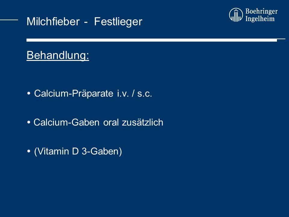 Milchfieber als Bestandsproblem