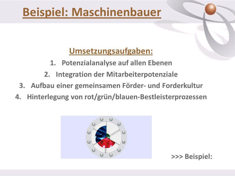 Beispiel: Maschinenbauer Umsetzungsaufgaben: 1.Potenzialanalyse auf allen Ebenen 2.Integration der Mitarbeiterpotenziale 3.Aufbau einer gemeinsamen Fö