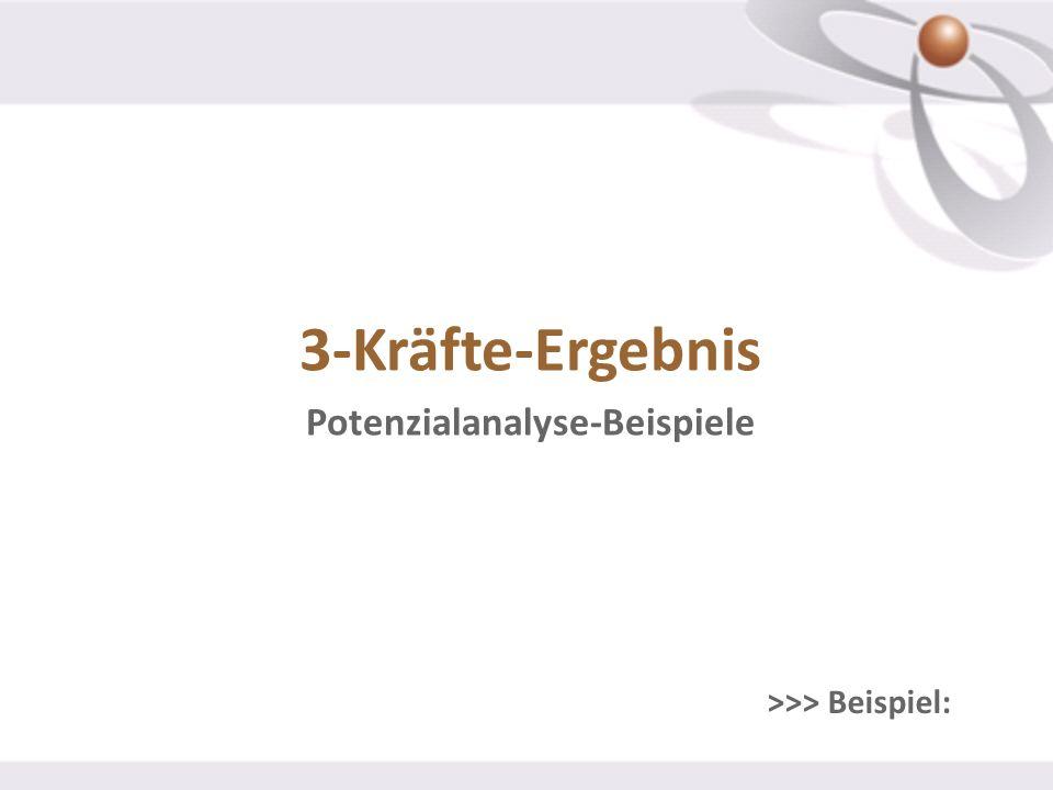 3-Kräfte-Ergebnis Potenzialanalyse-Beispiele >>> Beispiel: