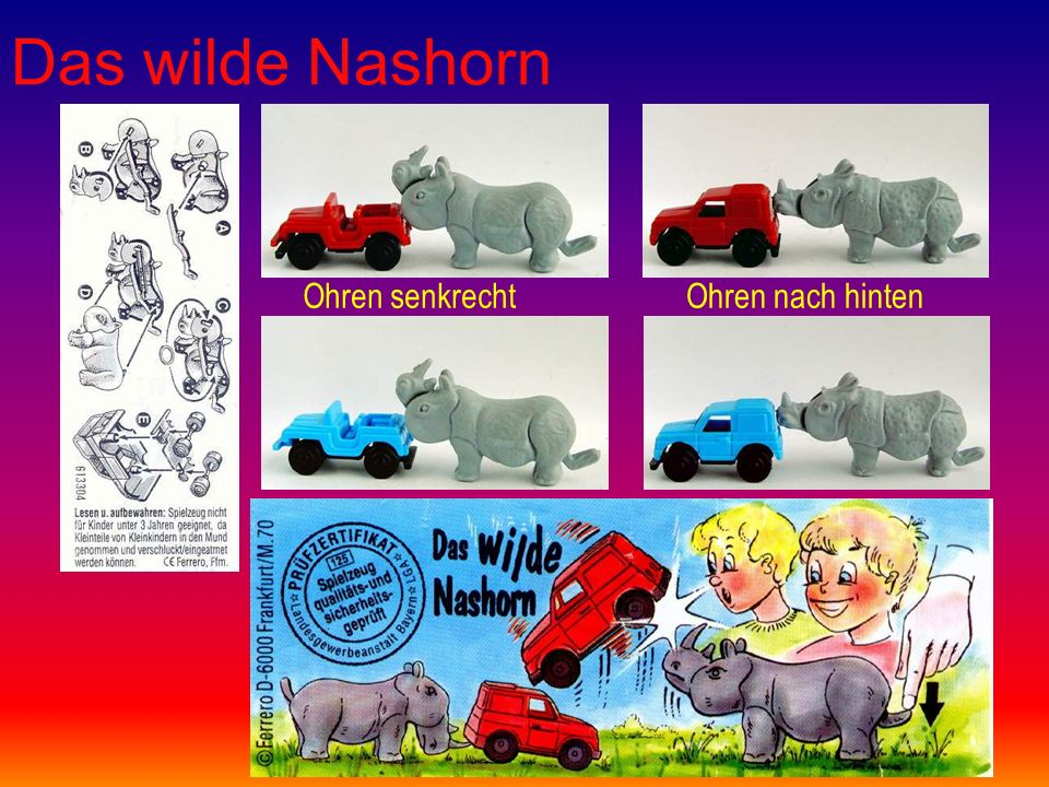 Das wilde Nashorn Ohren senkrechtOhren nach hinten