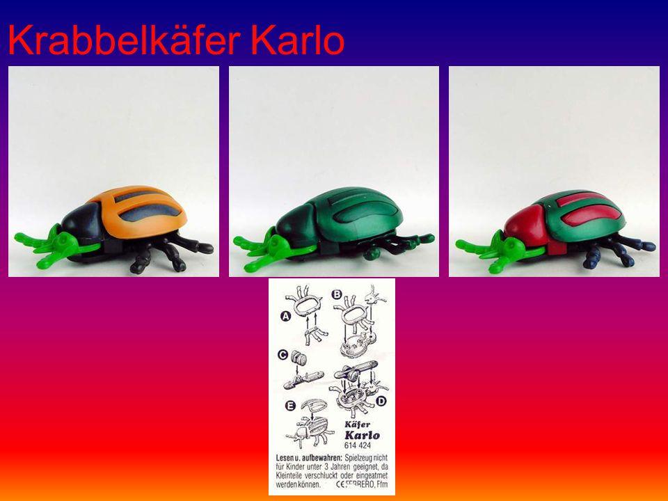 Krabbelkäfer Karlo