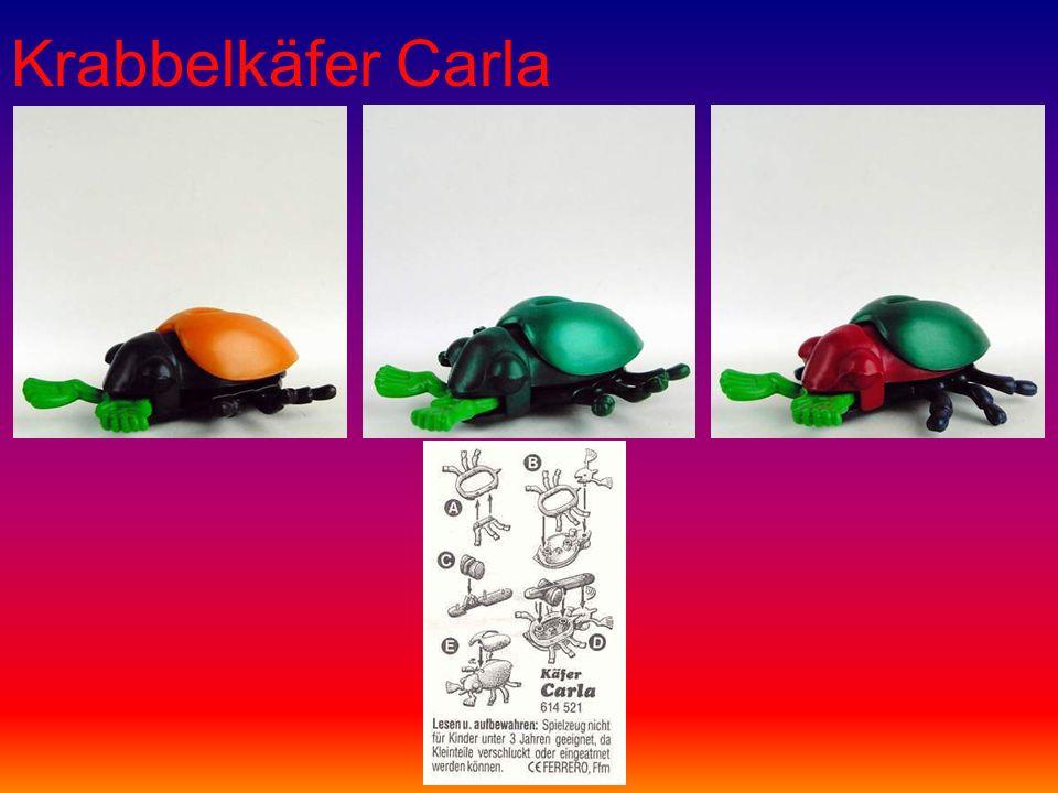 Krabbelkäfer Carla