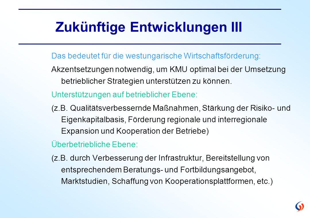 Zukünftige Entwicklungen III Das bedeutet für die westungarische Wirtschaftsförderung: Akzentsetzungen notwendig, um KMU optimal bei der Umsetzung betrieblicher Strategien unterstützen zu können.