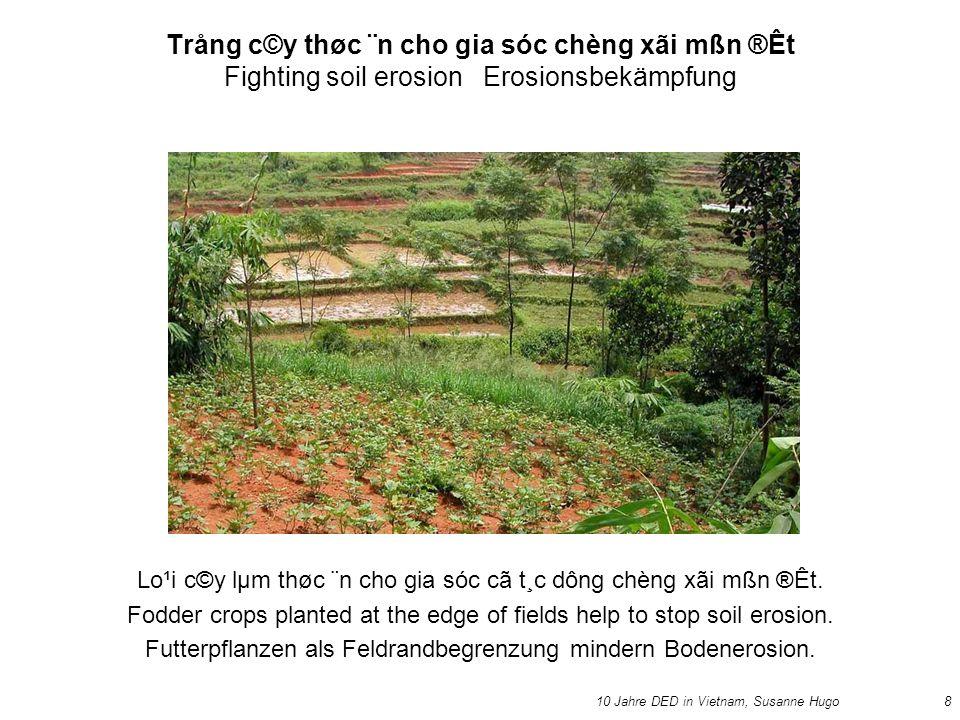 10 Jahre DED in Vietnam, Susanne Hugo8 Trång c©y thøc ¨n cho gia sóc chèng xãi mßn ®Êt Fighting soil erosion Erosionsbekämpfung Lo¹i c©y lµm thøc ¨n cho gia sóc cã t¸c dông chèng xãi mßn ®Êt.