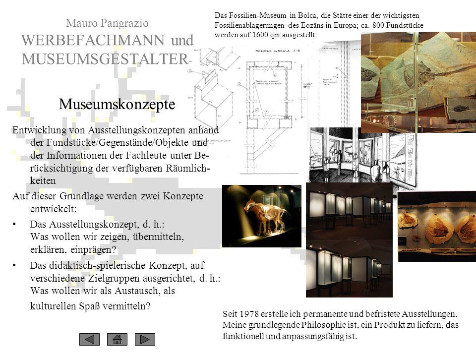 Seit 1978 erstelle ich permanente und befristete Ausstellungen. Meine grundlegende Philosophie ist, ein Produkt zu liefern, das funktionell und anpass