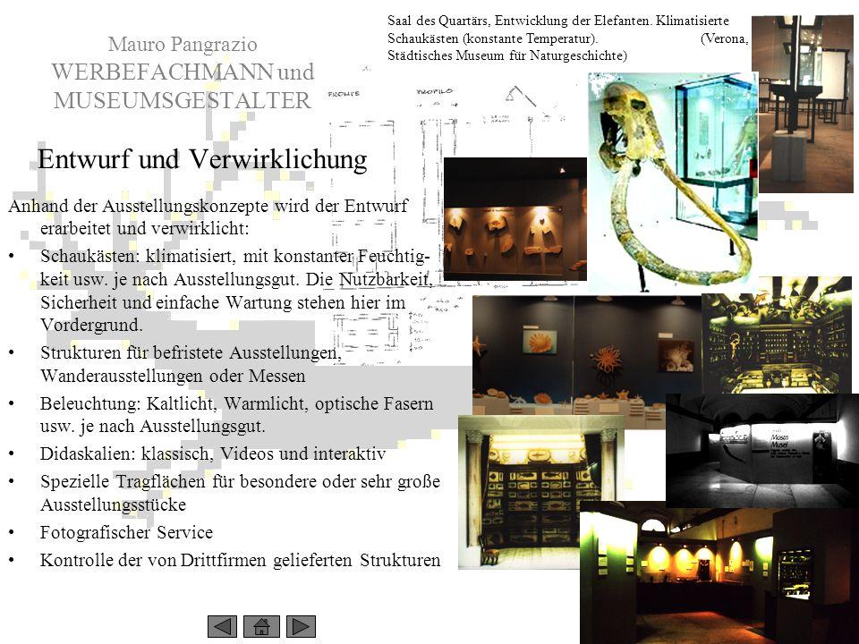 Mauro Pangrazio WERBEFACHMANN und MUSEUMSGESTALTER Saal des Quartärs, Entwicklung der Elefanten. Klimatisierte Schaukästen (konstante Temperatur). (Ve