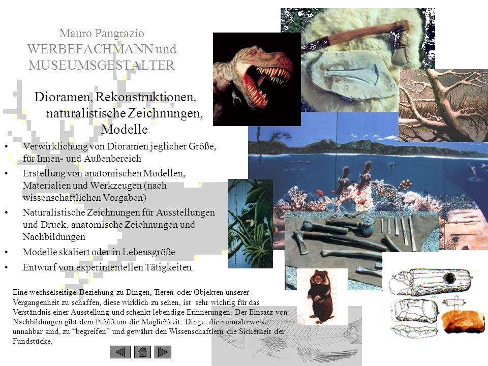 Mauro Pangrazio WERBEFACHMANN und MUSEUMSGESTALTER Dioramen, Rekonstruktionen, naturalistische Zeichnungen, Modelle Verwirklichung von Dioramen jeglic