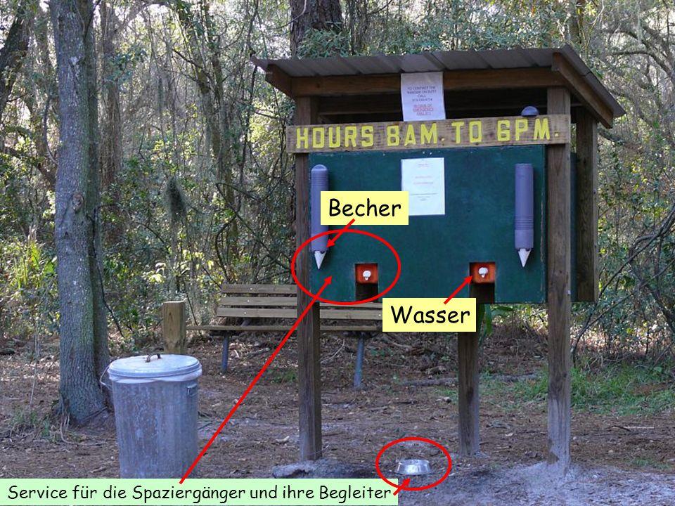 Service für die Spaziergänger und ihre Begleiter Wasser Becher