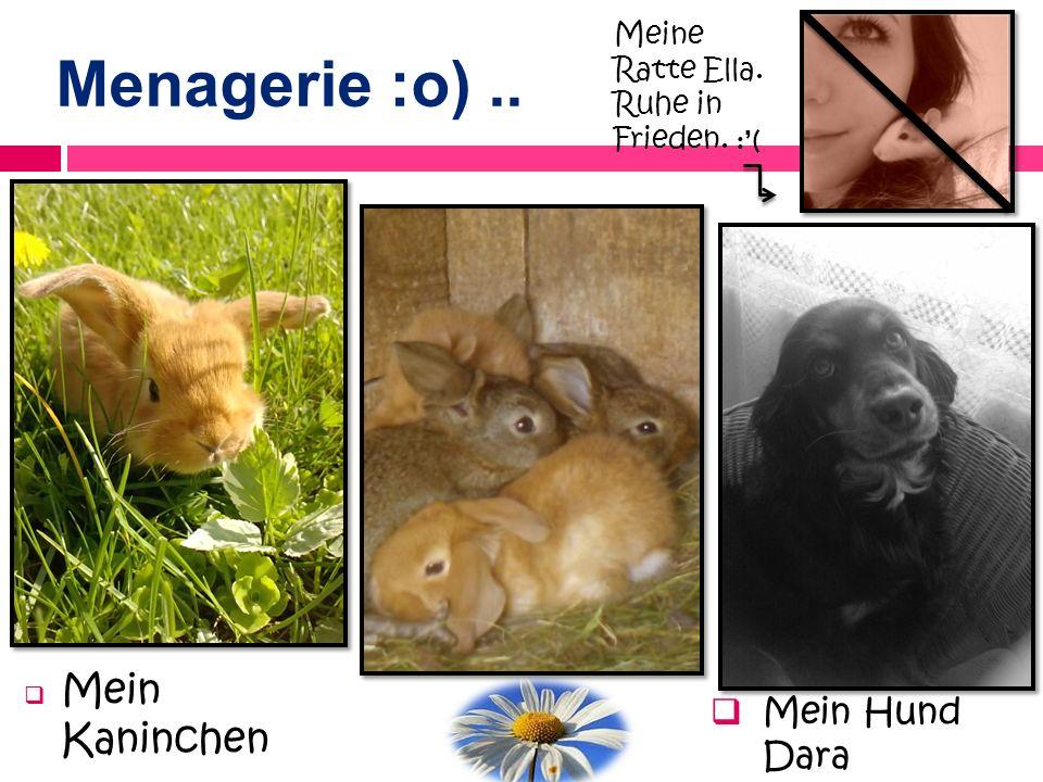 Menagerie :o).. Mein Kaninchen Mein Hund Dara Meine Ratte Ella. Ruhe in Frieden. :(