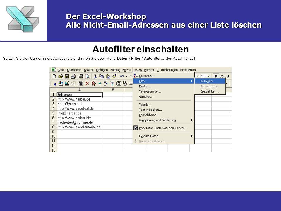 Filter-Dialog aufrufen Der Excel-Workshop Alle Nicht-Email-Adressen aus einer Liste löschen Klicken Sie auf das Filter-DropDown-Feld und wählen Sie Benutzerdefiniert...