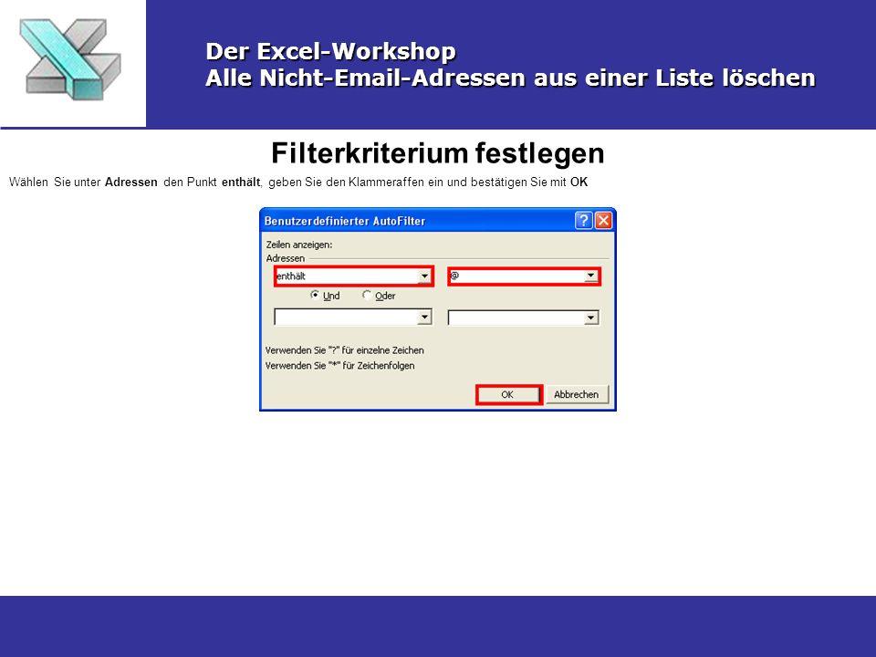 Gefilterte Daten kopiren Der Excel-Workshop Alle Nicht-Email-Adressen aus einer Liste löschen Markieren Sie die gefilterten Daten und wählen Sie Menü Bearbeiten und dann Kopieren oder drücken Sie den ShortCut Strg+c