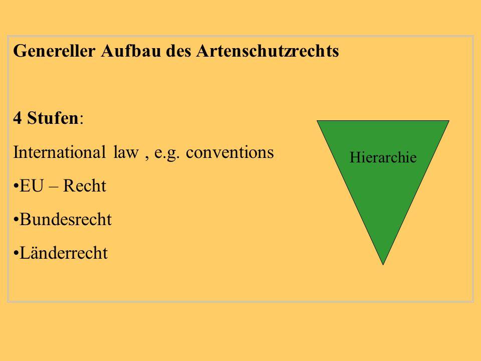Genereller Aufbau des Artenschutzrechts 4 Stufen: International law, e.g. conventions EU – Recht Bundesrecht Länderrecht Hierarchie