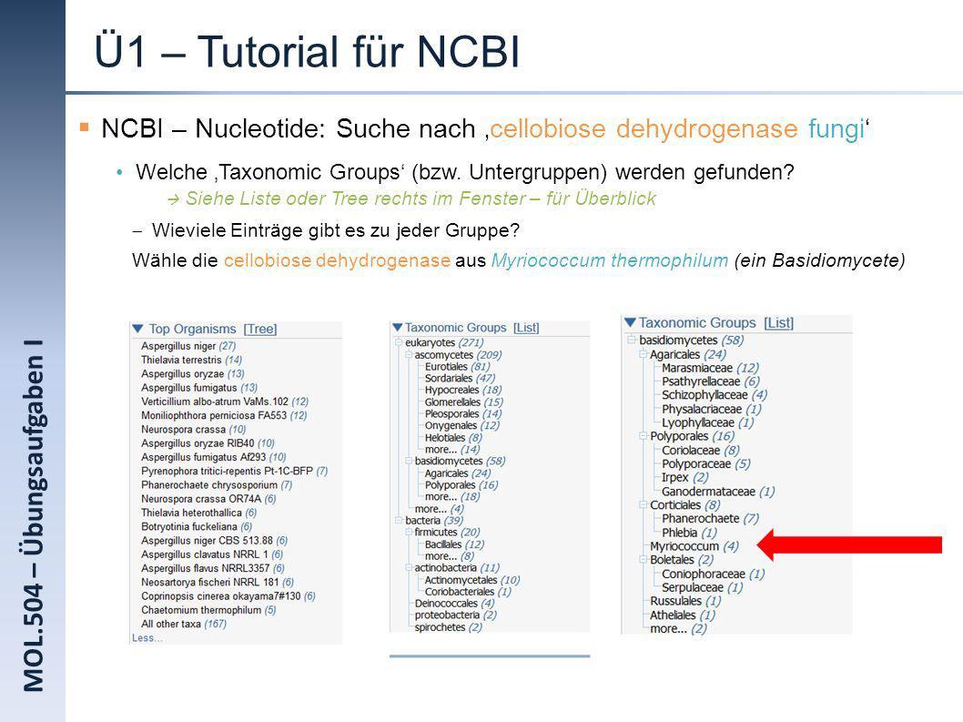 MOL.504 – Übungsaufgaben I Ü1 – Tutorial für NCBI NCBI – Nucleotide: Suche nach cellobiose dehydrogenase fungi Welche Taxonomic Groups (bzw. Untergrup