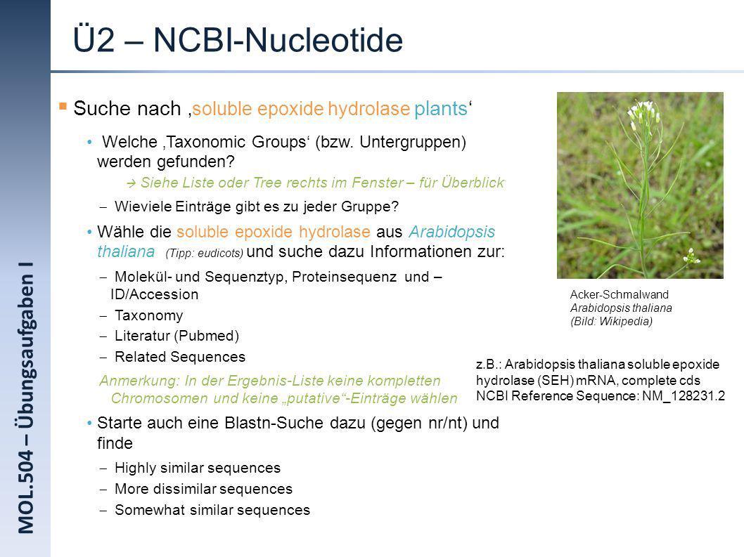 MOL.504 – Übungsaufgaben I Ü2 – NCBI-Nucleotide Suche nach soluble epoxide hydrolase plants Welche Taxonomic Groups (bzw. Untergruppen) werden gefunde