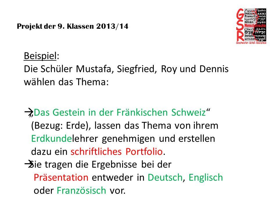 Projekt der 9. Klassen 2013/14 Beispiel: Die Schüler Mustafa, Siegfried, Roy und Dennis wählen das Thema: Das Gestein in der Fränkischen Schweiz (Bezu