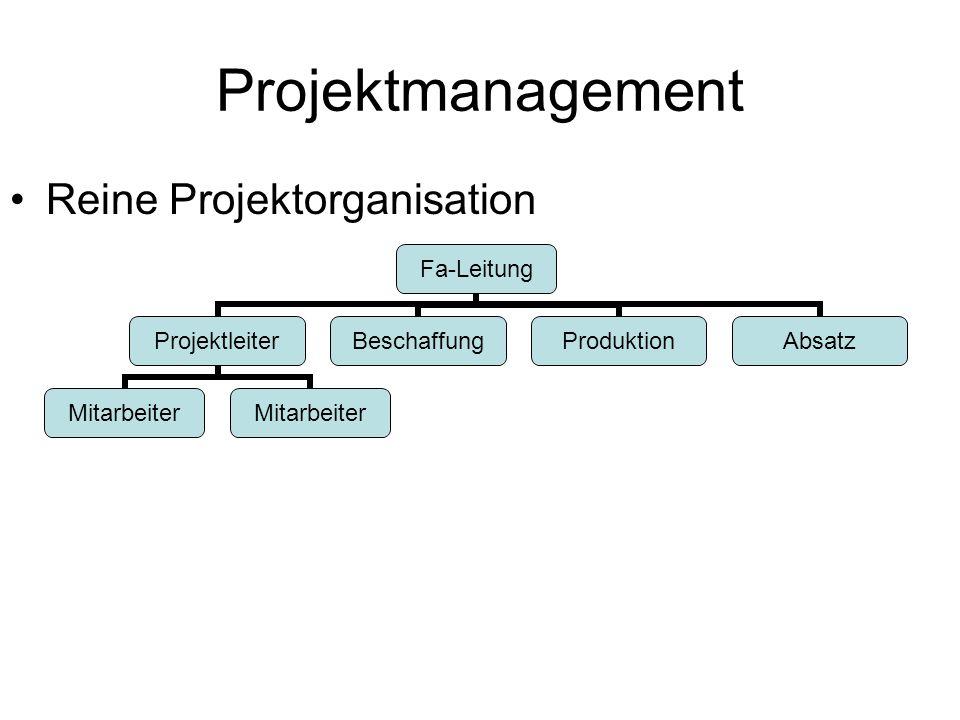 Projektmanagement Reine Projektorganisation Fa-Leitung Projektleiter Mitarbeiter BeschaffungProduktionAbsatz