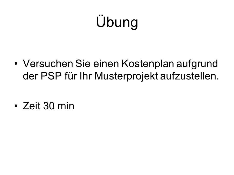 Übung Versuchen Sie einen Kostenplan aufgrund der PSP für Ihr Musterprojekt aufzustellen. Zeit 30 min