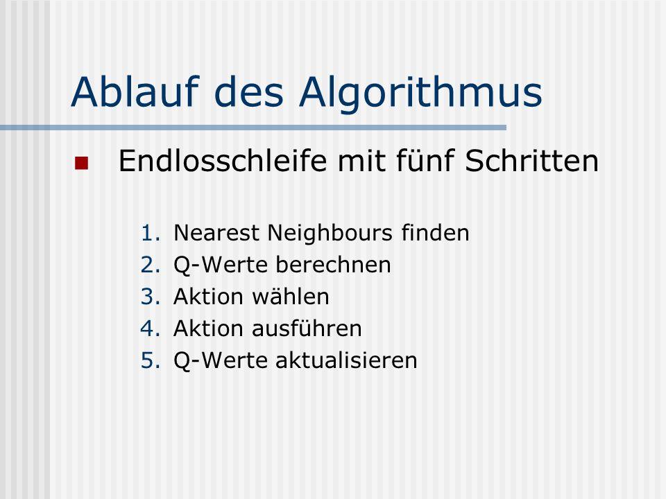 Ablauf des Algorithmus Endlosschleife mit fünf Schritten 1.Nearest Neighbours finden 2.Q-Werte berechnen 3.Aktion wählen 4.Aktion ausführen 5.Q-Werte aktualisieren