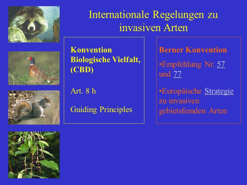 Internationale Regelungen zu invasiven Arten Berner KonventionKonvention Biologische Vielfalt, (CBD) Art. 8 h Guiding Principles Empfehlung Nr. 57 und