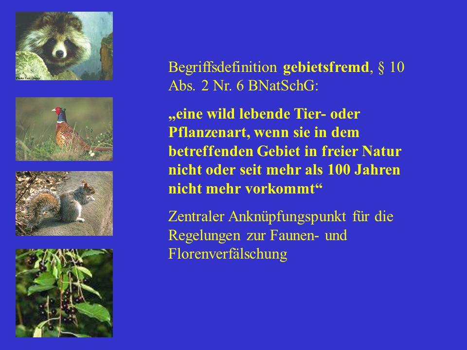 Begriffsdefinition gebietsfremd, § 10 Abs. 2 Nr. 6 BNatSchG: eine wild lebende Tier- oder Pflanzenart, wenn sie in dem betreffenden Gebiet in freier N