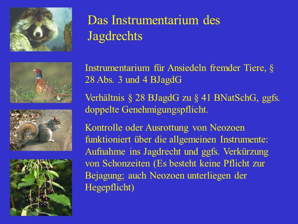 Das Instrumentarium des Jagdrechts Instrumentarium für Ansiedeln fremder Tiere, § 28 Abs. 3 und 4 BJagdG Verhältnis § 28 BJagdG zu § 41 BNatSchG, ggfs