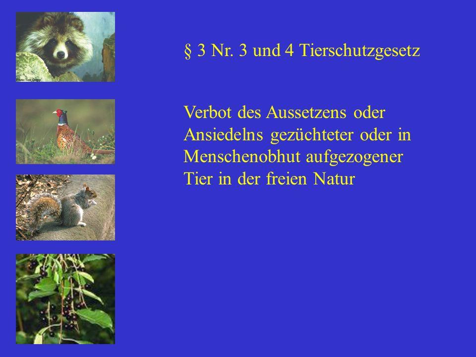 § 3 Nr. 3 und 4 Tierschutzgesetz Verbot des Aussetzens oder Ansiedelns gezüchteter oder in Menschenobhut aufgezogener Tier in der freien Natur