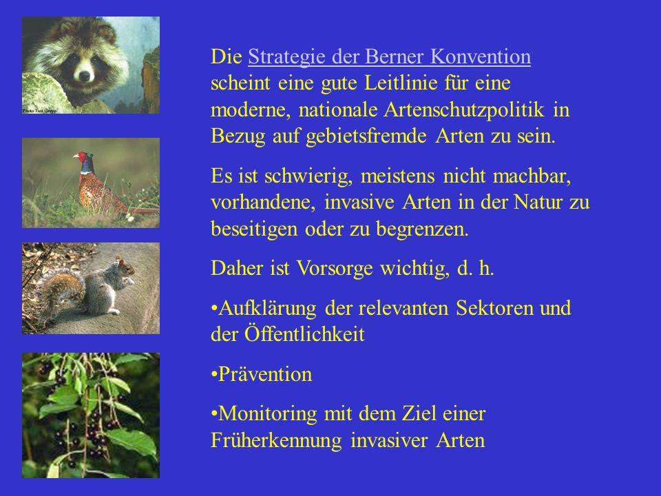 Die Strategie der Berner Konvention scheint eine gute Leitlinie für eine moderne, nationale Artenschutzpolitik in Bezug auf gebietsfremde Arten zu sei