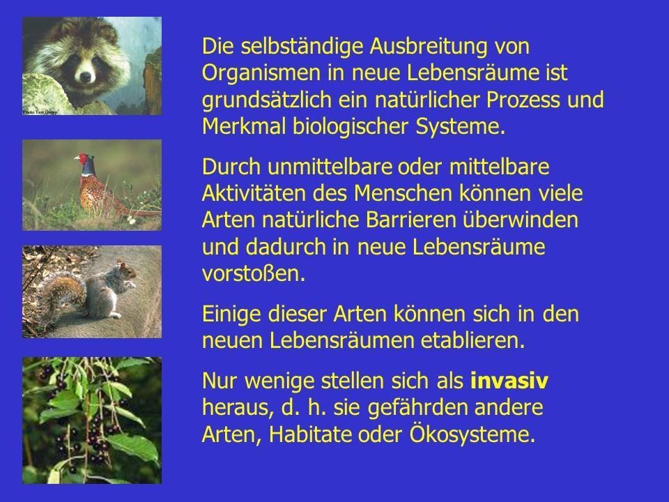 Die selbständige Ausbreitung von Organismen in neue Lebensräume ist grundsätzlich ein natürlicher Prozess und Merkmal biologischer Systeme. Durch unmi