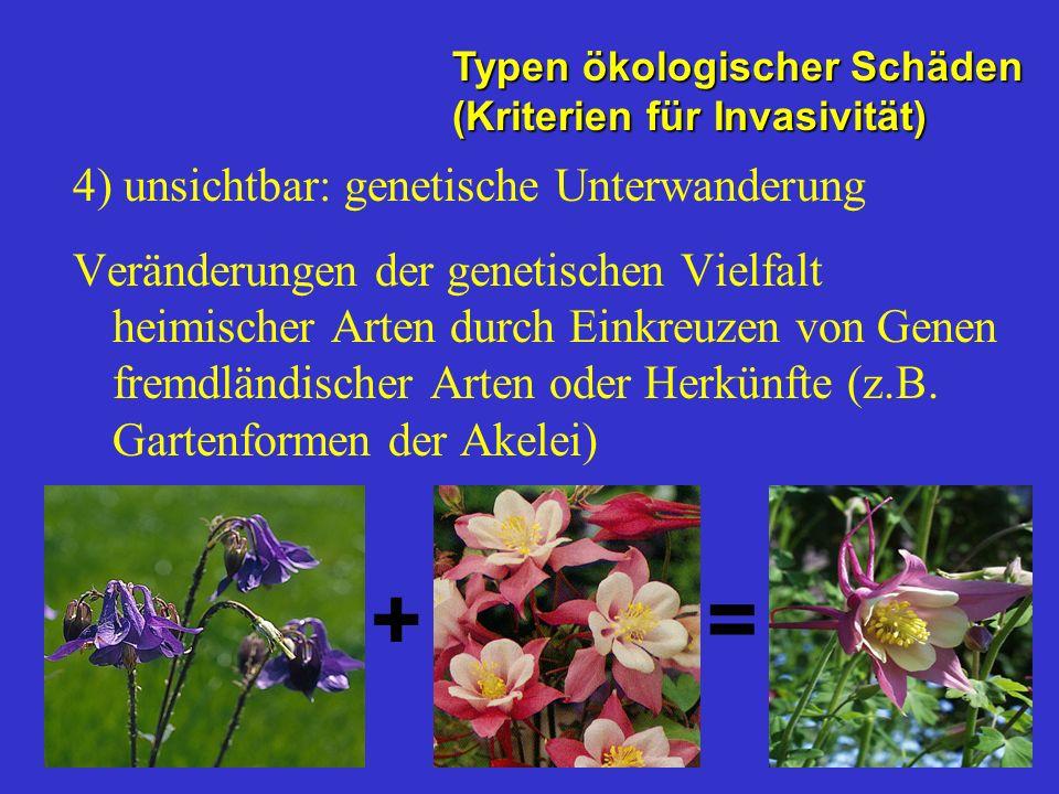 4) unsichtbar: genetische Unterwanderung Veränderungen der genetischen Vielfalt heimischer Arten durch Einkreuzen von Genen fremdländischer Arten oder