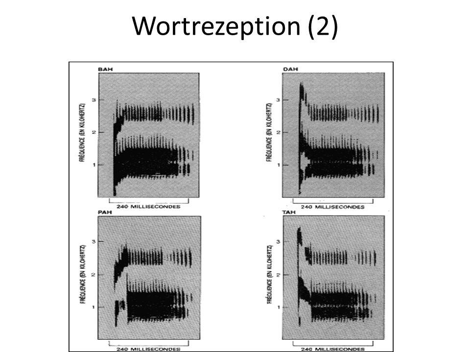 Wortrezeption (2)