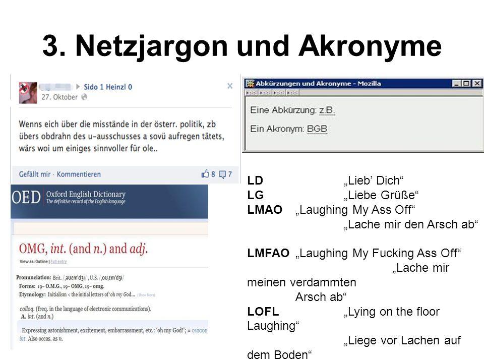 3.Netzjargon und Akronyme 3. 12.