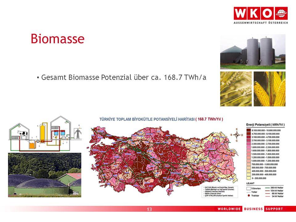 13 Biomasse Gesamt Biomasse Potenzial über ca. 168.7 TWh/a