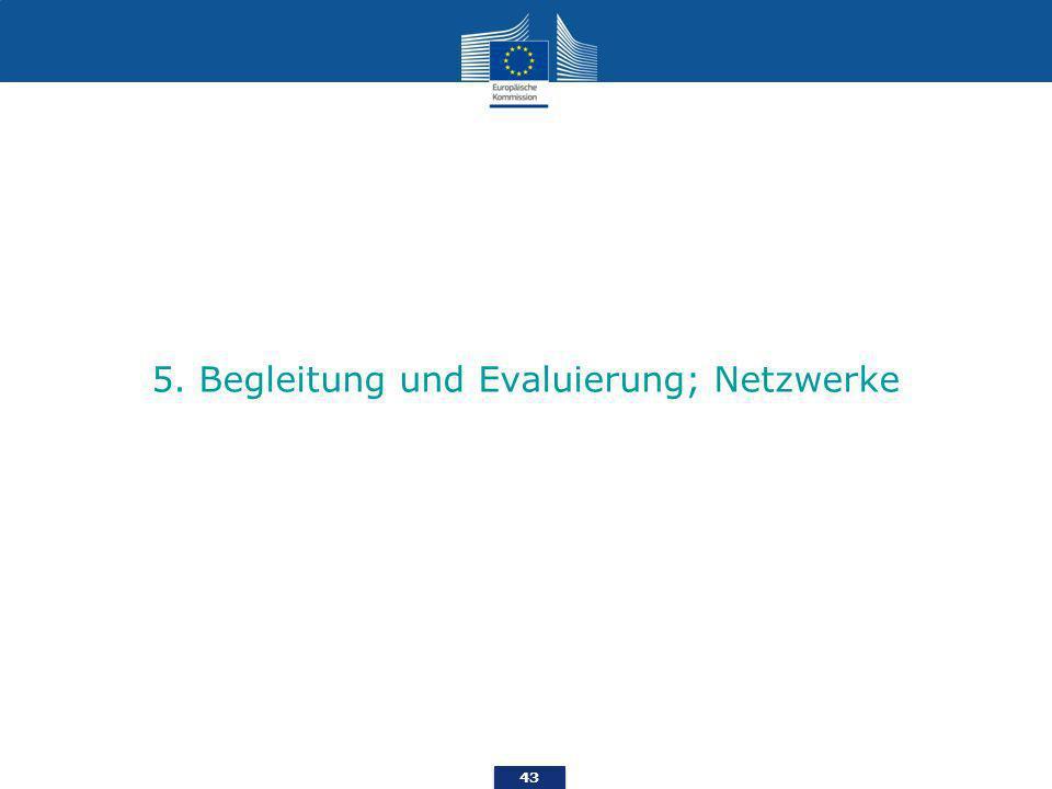43 5. Begleitung und Evaluierung; Netzwerke