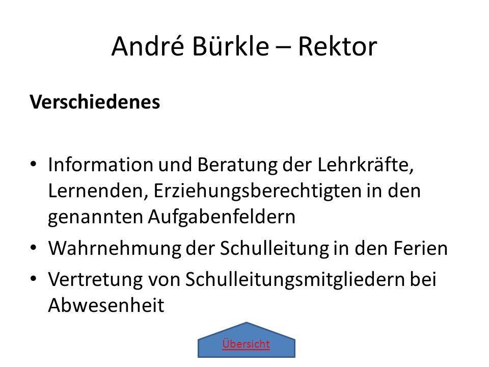 Übersicht André Bürkle – Rektor Verschiedenes Information und Beratung der Lehrkräfte, Lernenden, Erziehungsberechtigten in den genannten Aufgabenfeld