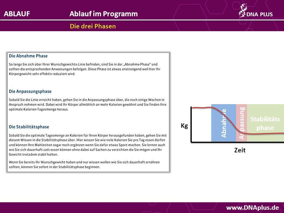 www.DNAplus.de ABLAUFAblauf im Programm Die drei Phasen DNAPLUS Abnahme Anpassung Stabilitäts phase Kg Zeit