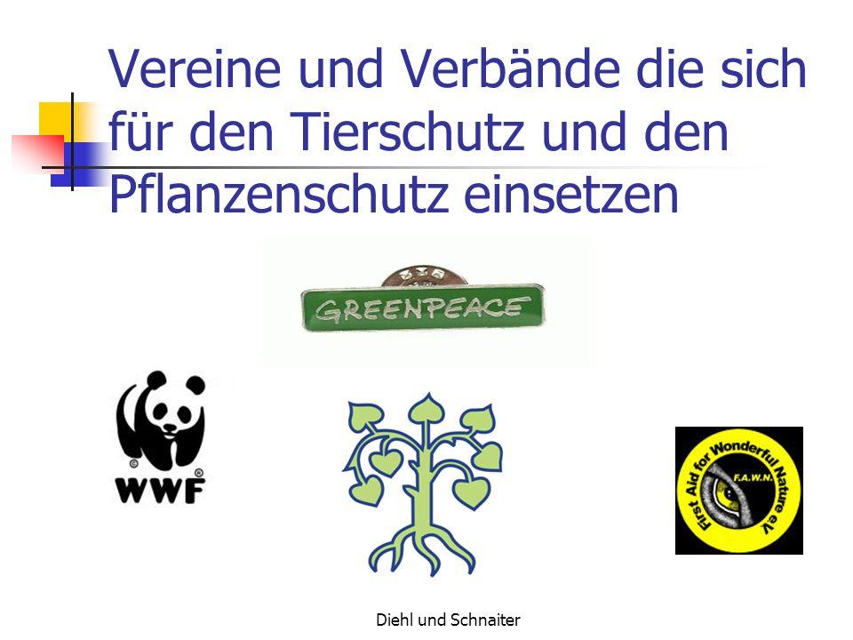 Diehl und Schnaiter Informationsquellen Greenpeace.com WWF.com Rote Liste.de goggle.de alltheweb.de Volksbegehren-Wald.de