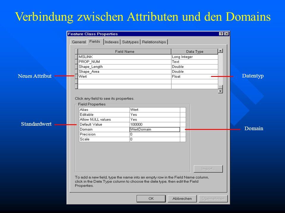 Neues Attribut Datentyp Standardwert Domain Verbindung zwischen Attributen und den Domains