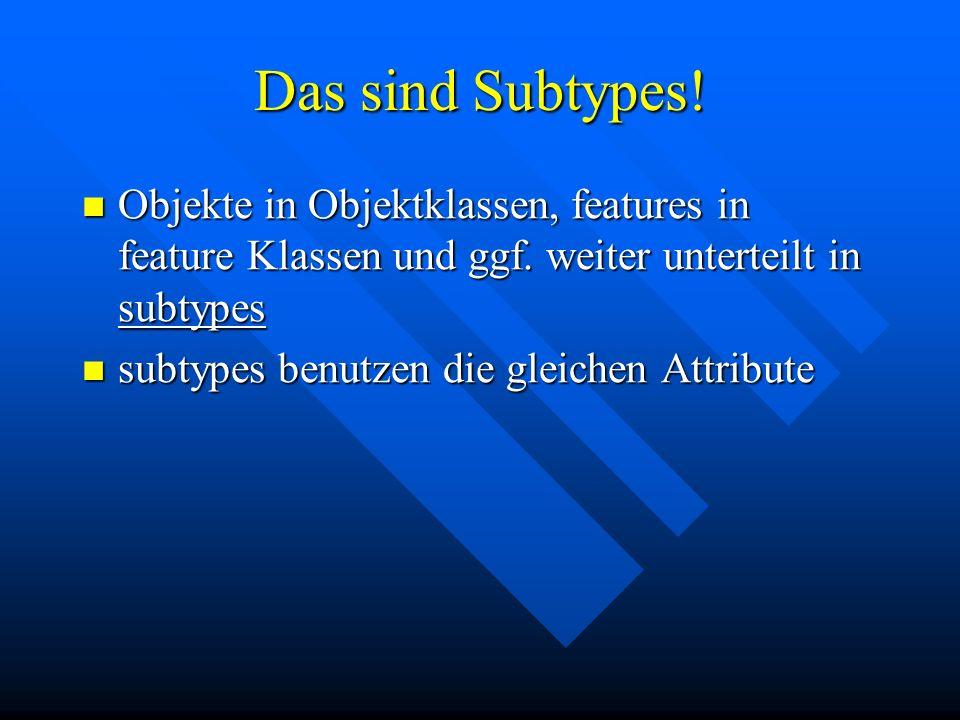 Das sind Subtypes! Objekte in Objektklassen, features in feature Klassen und ggf. weiter unterteilt in subtypes Objekte in Objektklassen, features in