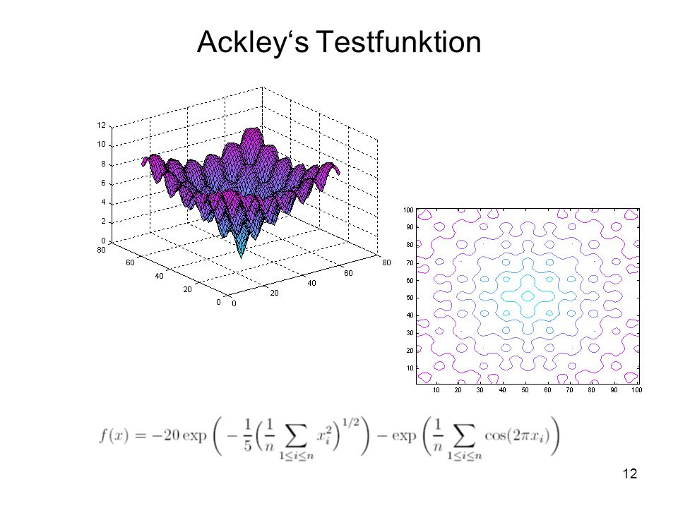 12 Ackleys Testfunktion