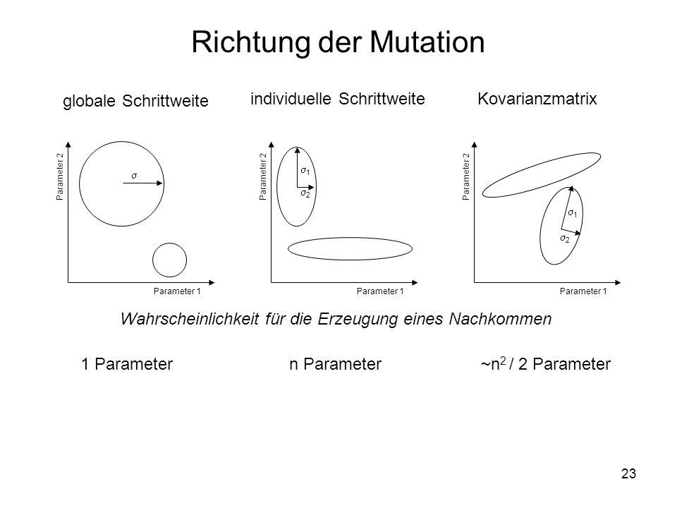 23 Richtung der Mutation Wahrscheinlichkeit für die Erzeugung eines Nachkommen 1 2 1 2 globale Schrittweite individuelle Schrittweite Kovarianzmatrix