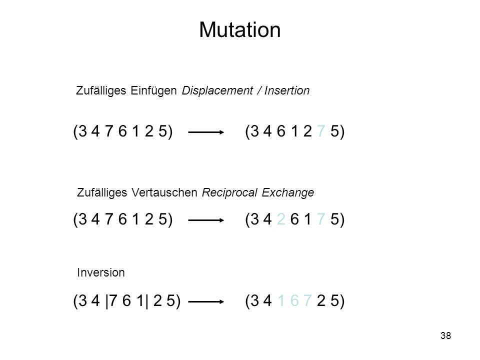 38 Mutation (3 4 7 6 1 2 5) Zufälliges Einfügen Displacement / Insertion Zufälliges Vertauschen Reciprocal Exchange (3 4 2 6 1 7 5) (3 4 6 1 2 7 5) (3