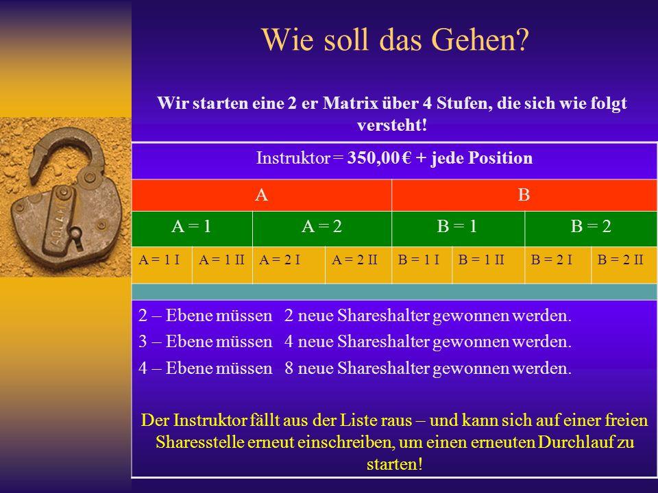 Förderverein Vision Deutschland Ltd.