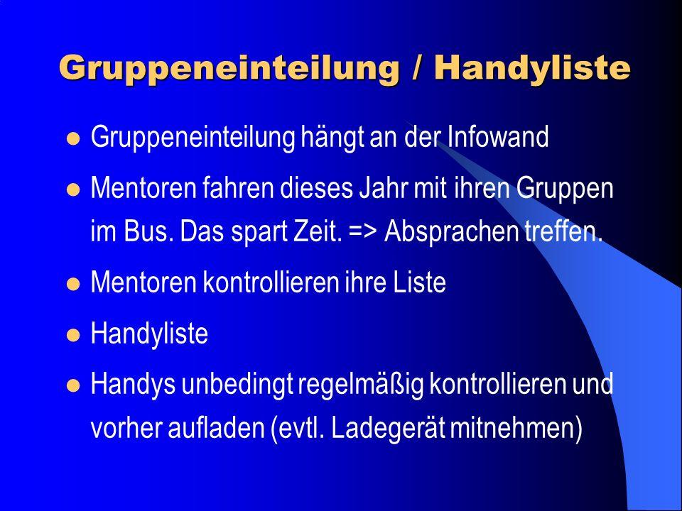 Infos im Bus Mappe in jedem Bus Anwesenheit und Ausweise vor der Abfahrt kontrollieren Pisten - Regeln vorlesen Gruppenlisten an Schülermentoren verte