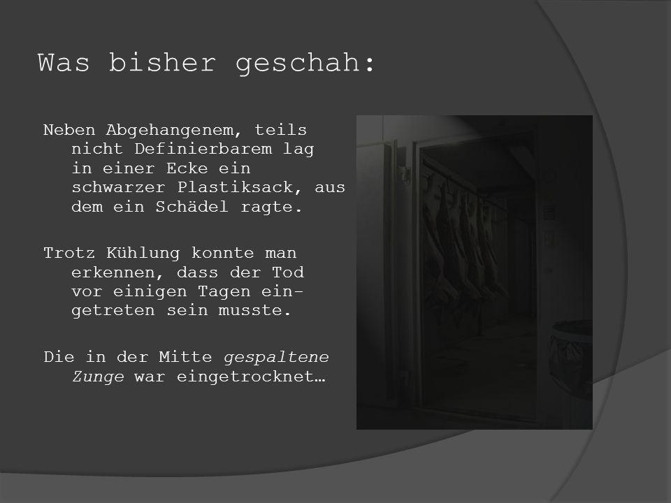 Was bisher geschah: Am 17.11.2007 läutete um 05.47 Inspektor Reiters Telefon. Eine aufgebrachte kaum verständliche Stimme flehte: biede hel inspektel.