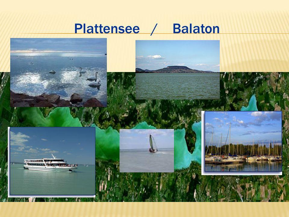 Plattensee / Balaton
